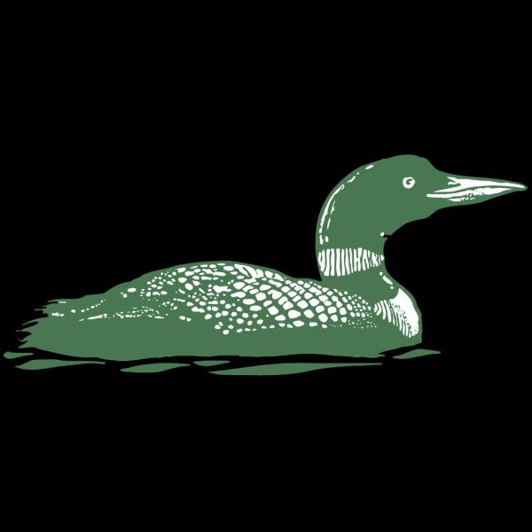 Green Duck Art PNG Clip art