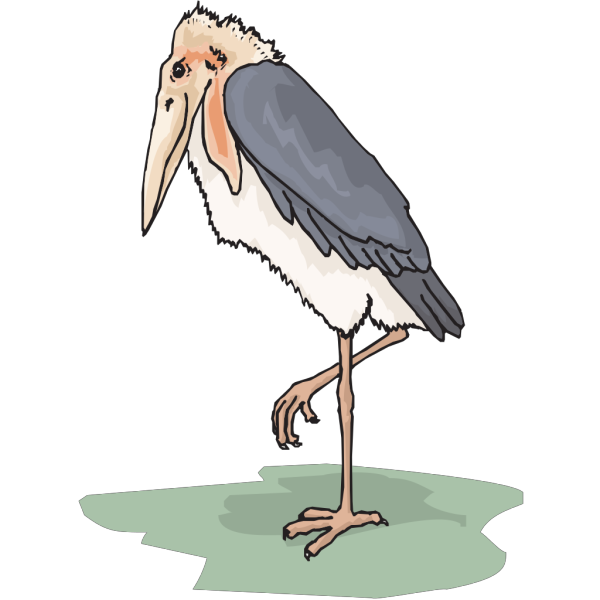 Marabou Stork PNG Clip art