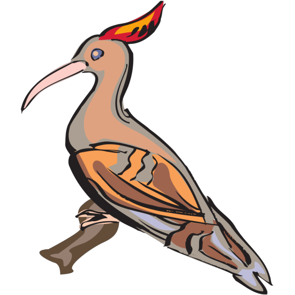 Perched Hoopoe PNG Clip art
