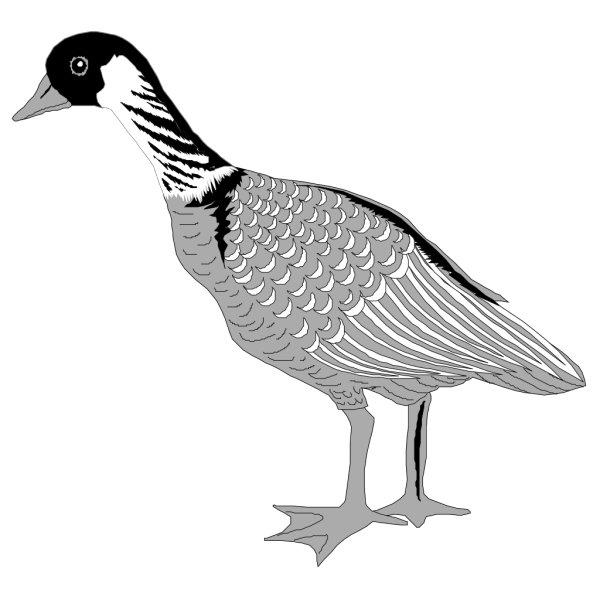 Grayscale Goose PNG Clip art