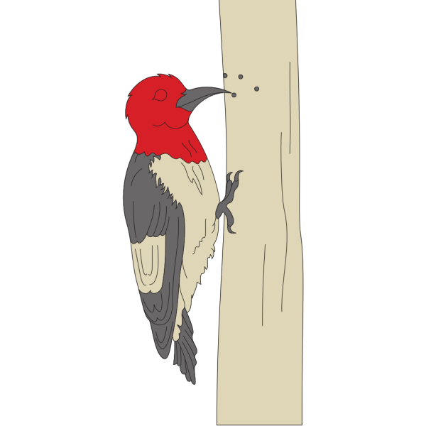 Pecking Woodpecker PNG Clip art