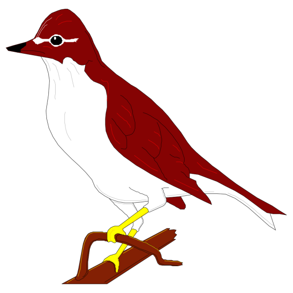 Perched Wood Thrush PNG Clip art