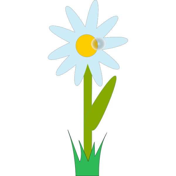 Flower Plant PNG images