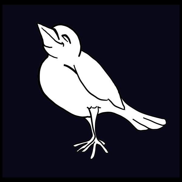 Happy Bird PNG images