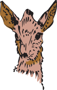 Brown Antelope Drawing PNG Clip art