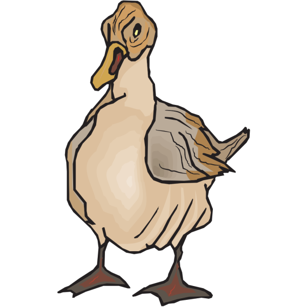 Brown Feathered Duck PNG Clip art