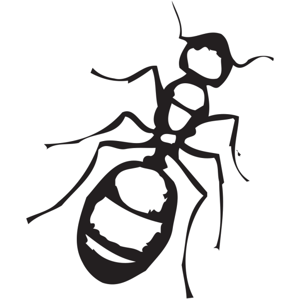 Sketch Of An Ant PNG images