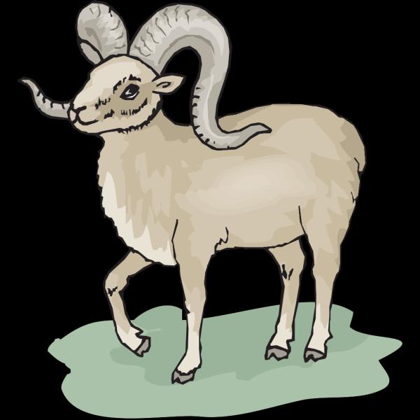 Gray Bighorn Sheep PNG Clip art