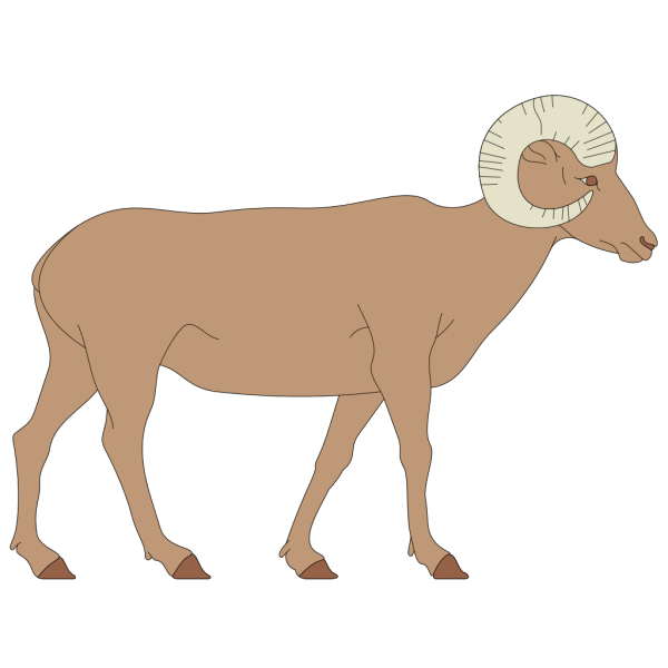 Walking Bighorn Sheep PNG Clip art