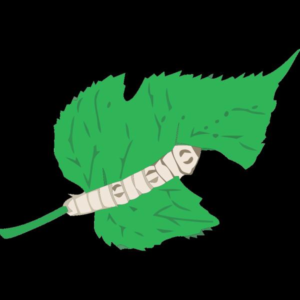Silkworm PNG Clip art