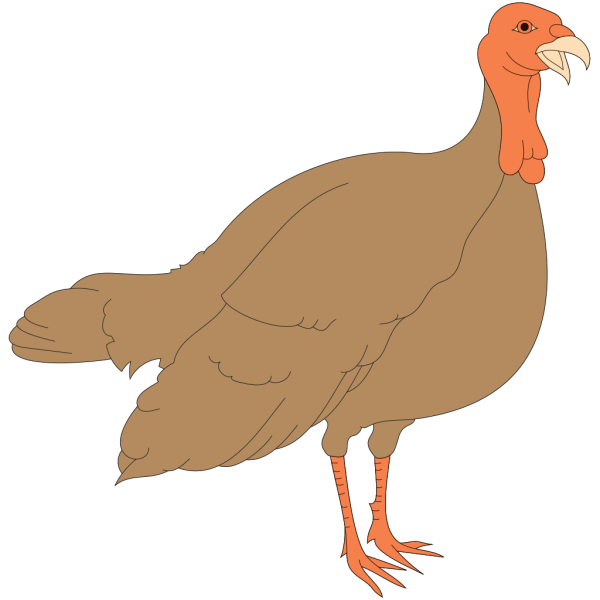 Turkey PNG Clip art