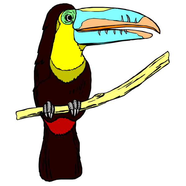 Perched Toucan PNG Clip art