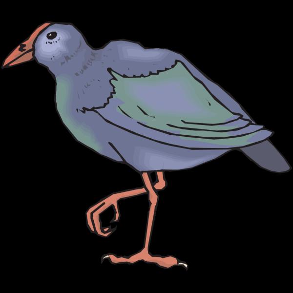 Takahe PNG Clip art