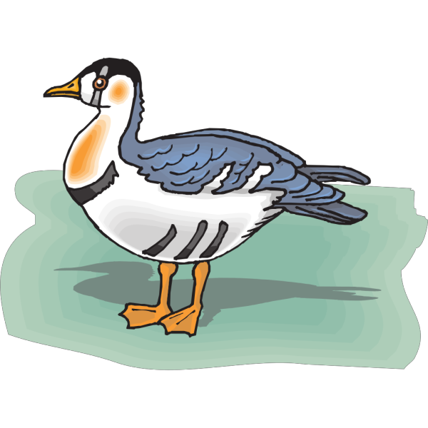 Slovanian Grebe PNG images