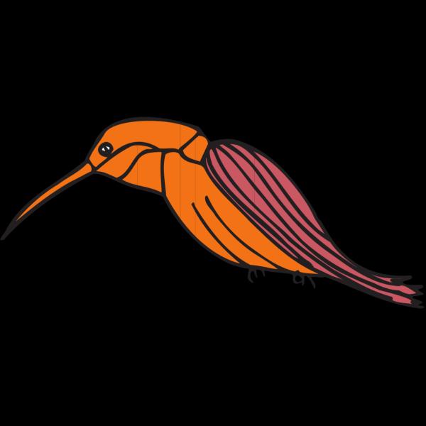 Sapsucker PNG Clip art