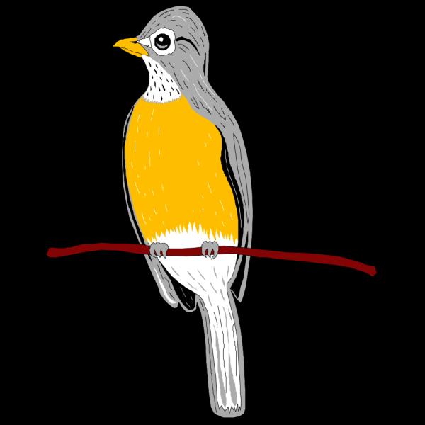Perched Robin PNG Clip art