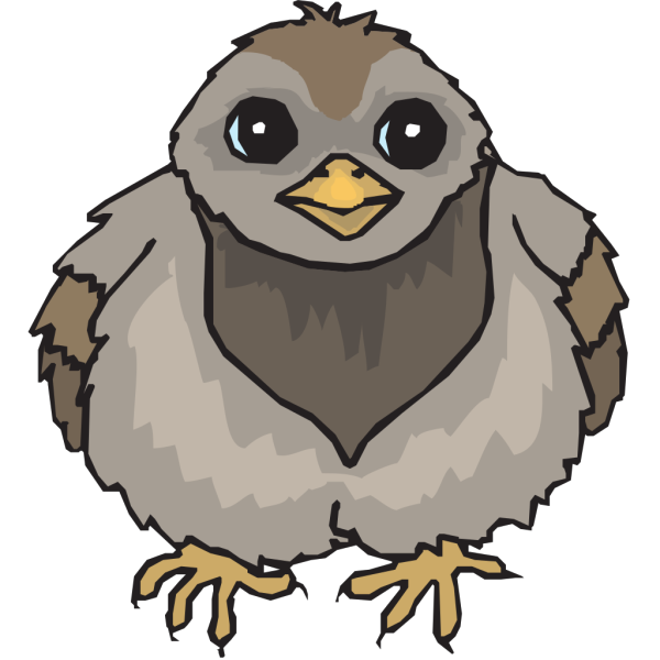 Pigeon Baby PNG Clip art