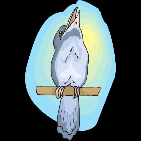 Perched Kookabura PNG Clip art