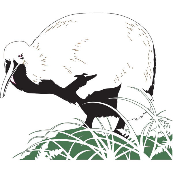 Kiwi Bird In The Grass PNG Clip art