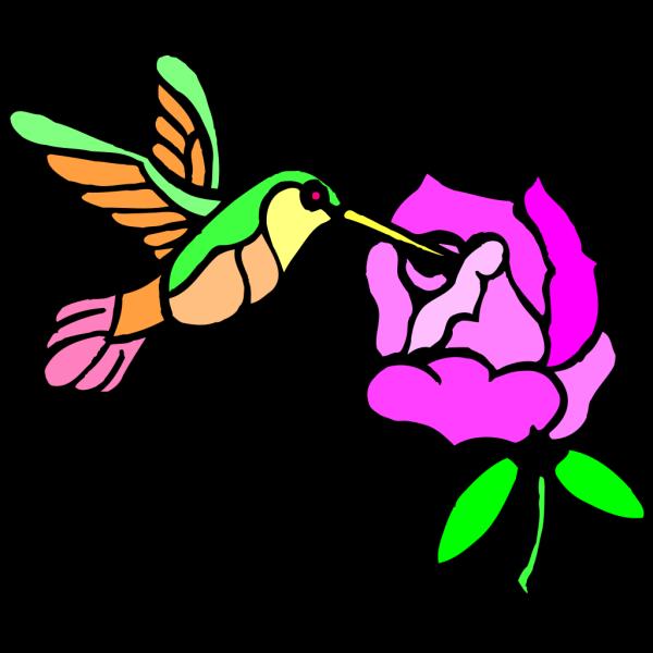 Hummingbird With Flower PNG Clip art