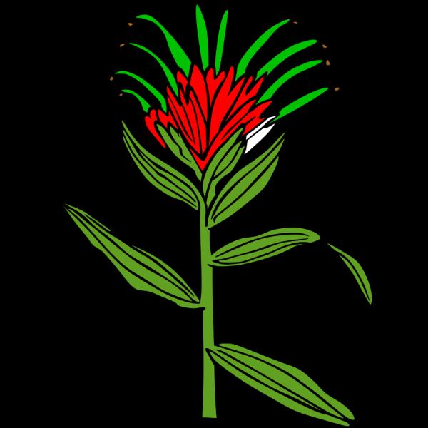 Flower 54 PNG Clip art