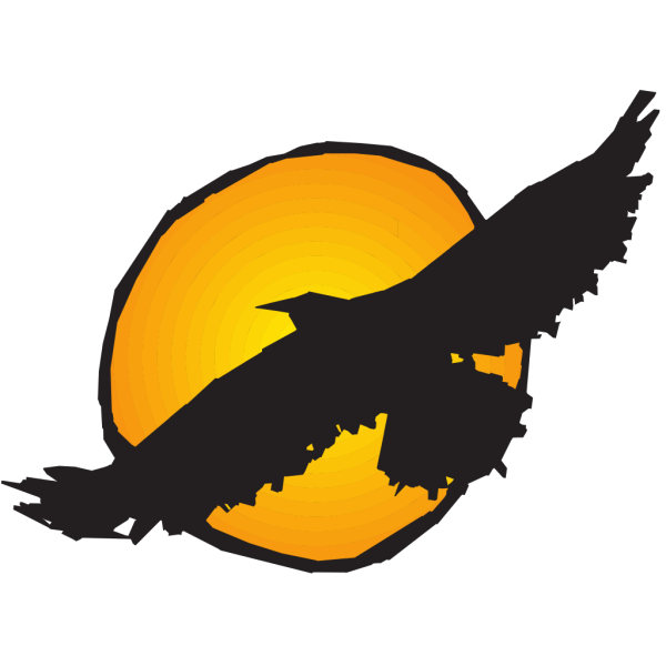 Hawk Silhouette Flying Near Sun PNG images