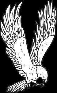 Flying Hawk Art PNG images