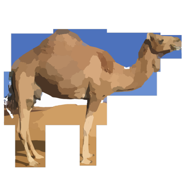 Camel PNG icons