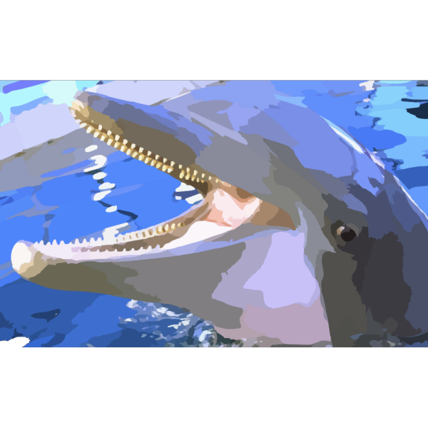 Smiling Dolphin PNG Clip art