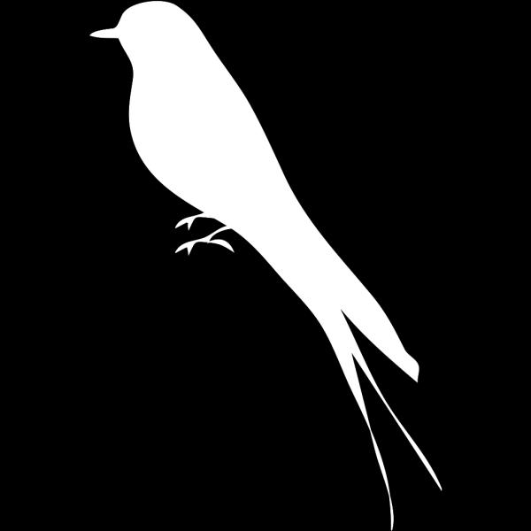White Solid Mockingbird PNG Clip art