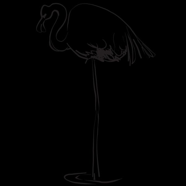 Flamingo Outline Art PNG Clip art
