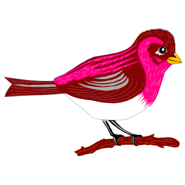 Perched Pink And Brown Finch PNG images