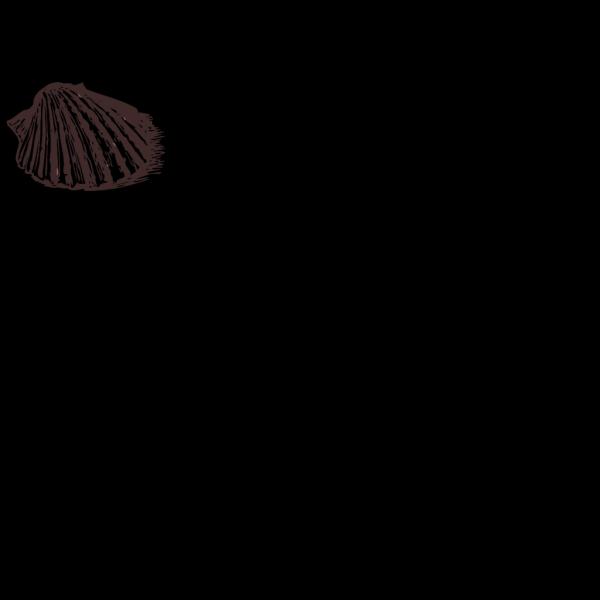 Shellfish Clam PNG Clip art