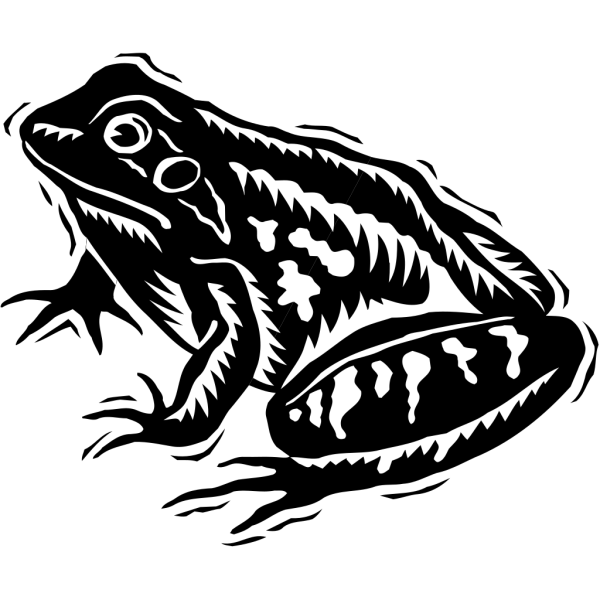 Black And White Frog Art PNG Clip art