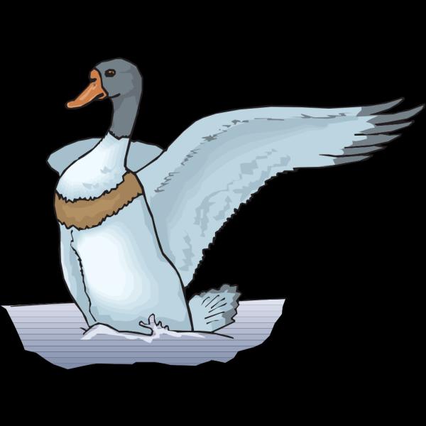 Blue Duck In Water PNG Clip art