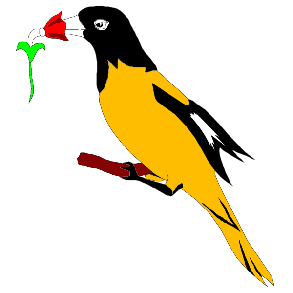 Oriole With Flower PNG Clip art
