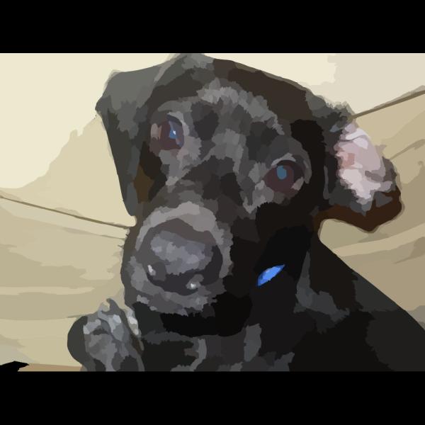 Dog Puppy PNG Clip art