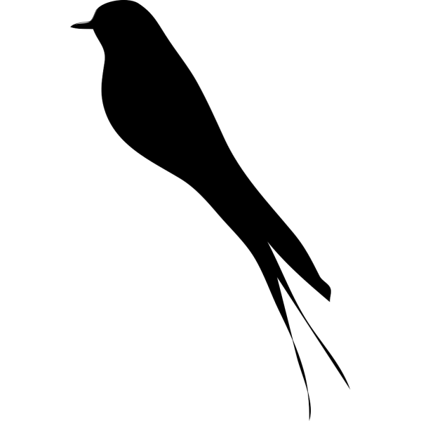 Blackbird PNG images