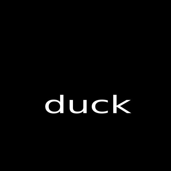 Duck PNG Clip art