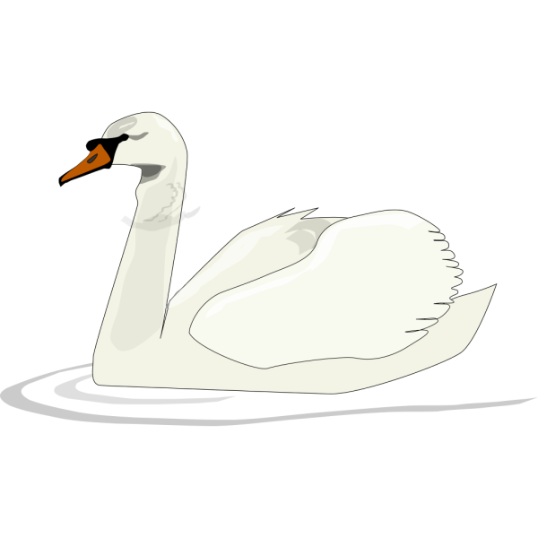 Swan Swimming In The Sun PNG Clip art