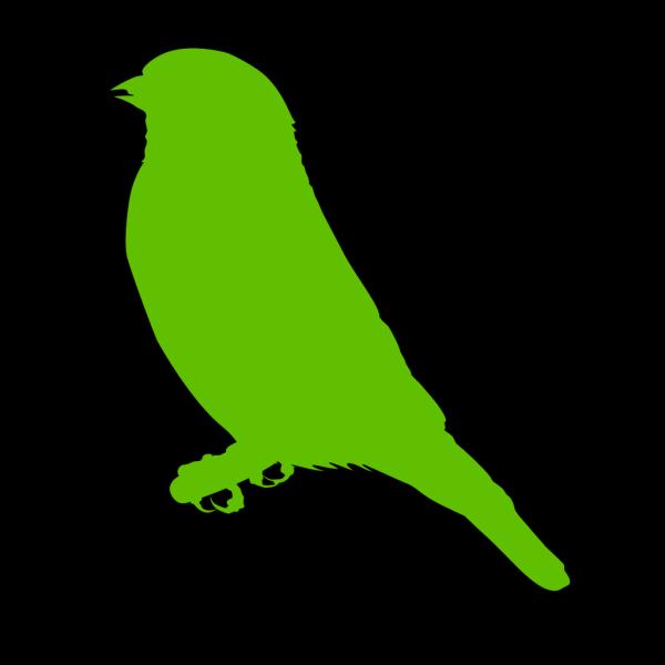 Lighter Green Bird PNG Clip art