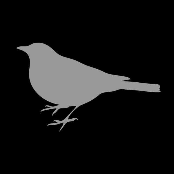 Small Grey Bird PNG Clip art