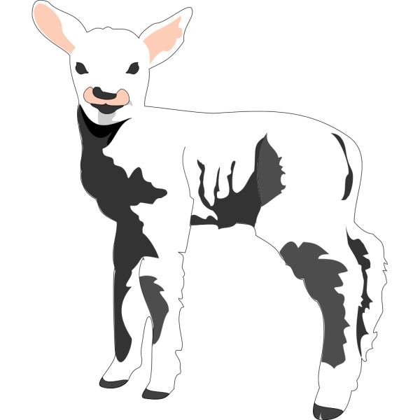 Lamb In Shadow PNG images