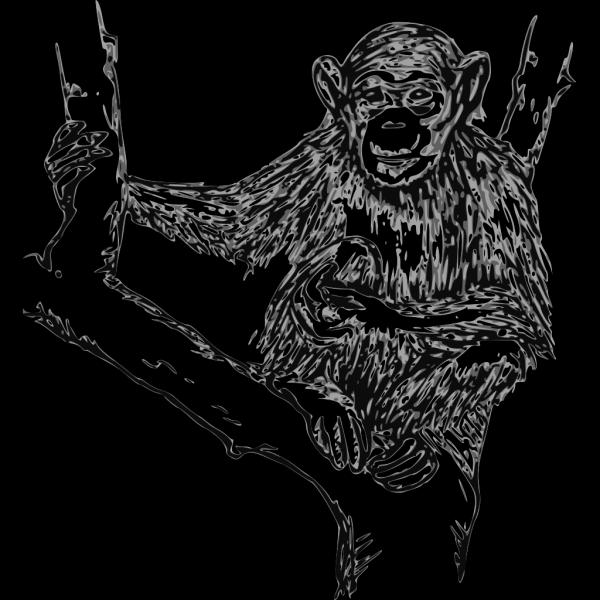 Grayscale Chimpanzee PNG Clip art