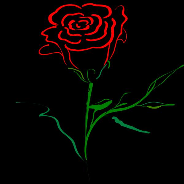 Rose Outline PNG Clip art