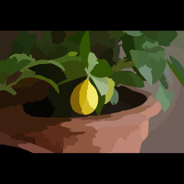 Lemon Shark PNG Clip art
