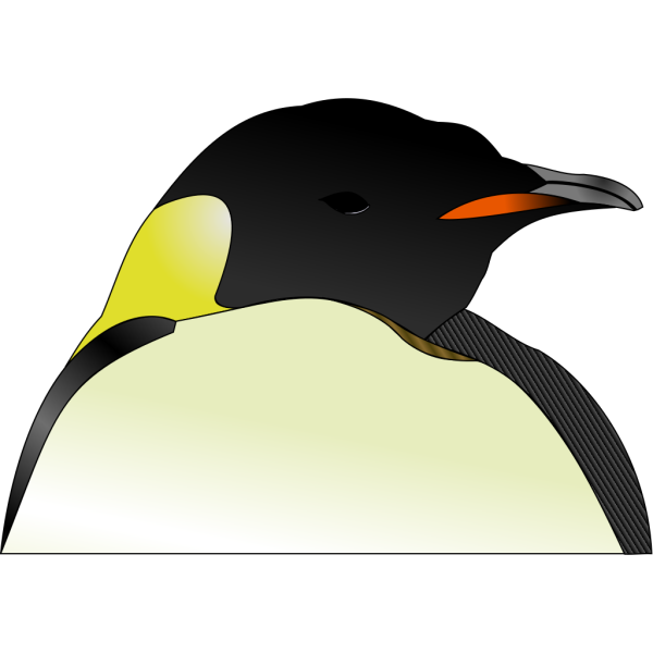 Penguin Turned Head PNG Clip art