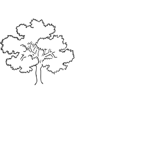 Fall Tree PNG icons