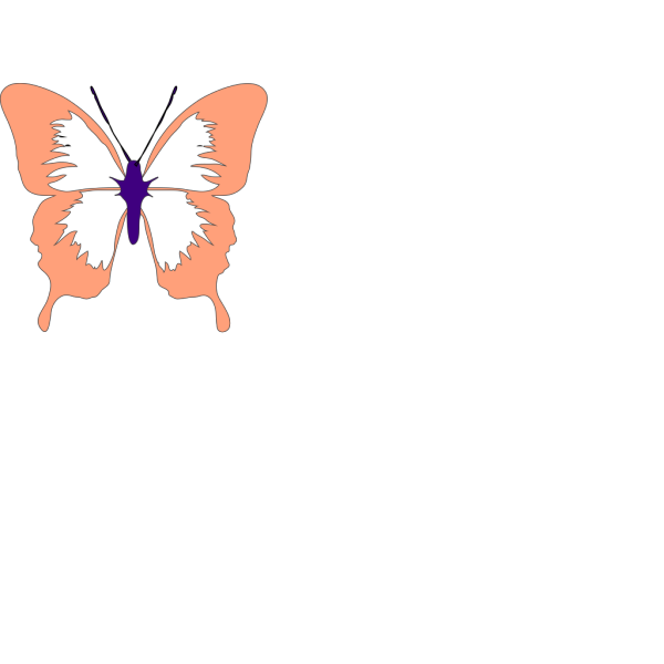 Purple And Peach Butterfly PNG images