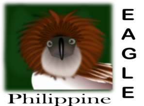 Philippine Eagle PNG Clip art